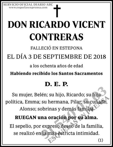Ricardo Vicent Contreras